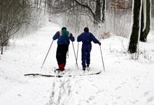 sentier de ski de fond quebec, condition ski de fond quebec,
